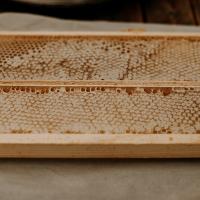 A close up of honeycomb