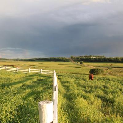 A farm in Didsbury Alberta